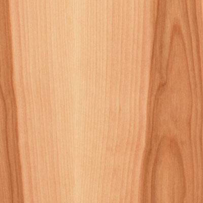 & White Birch | Wood Cabinet Door and Drawer Materials | Decore.com