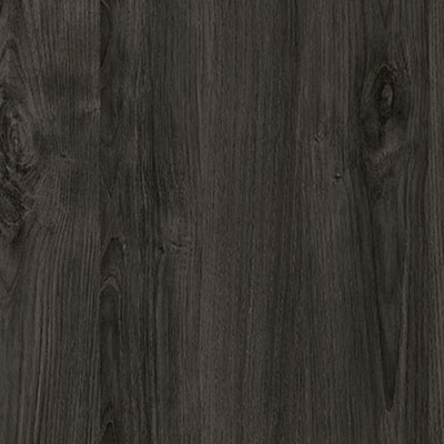 Charcoal Chestnut (SS247)