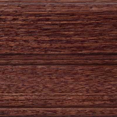 Acorn on Red Oak