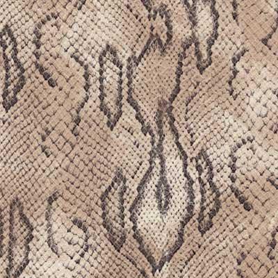 Leather Snake Python (SS102)