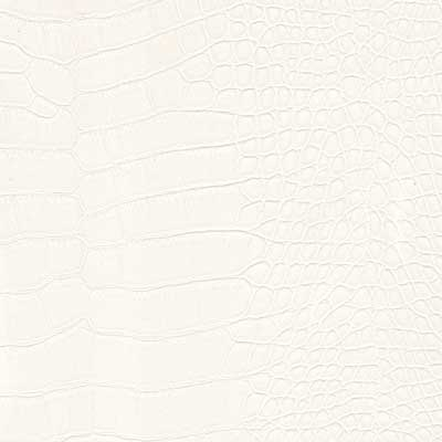 Leather White Alligator (SS90)